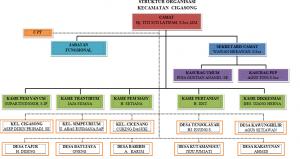 Struktur Organisasi Kecamatan Cigasong